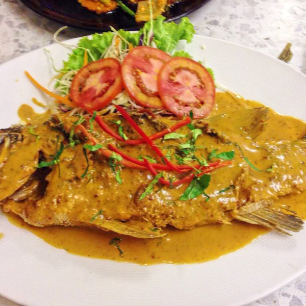 White sea bass Panang Curry